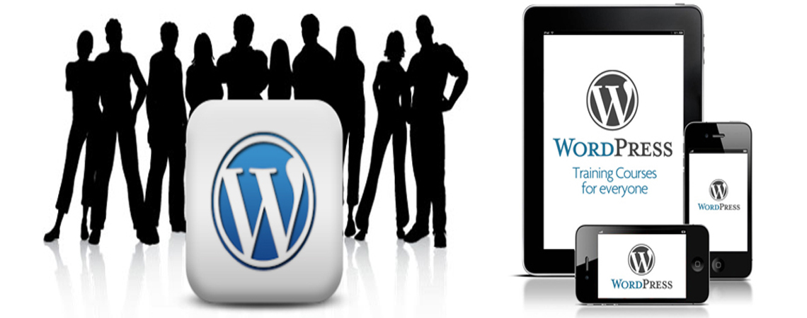 WordPress : #1 CMS In The World