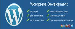 bisnes-wordpress-belajar-bina-website-laman-web-canggih-blog-web-site